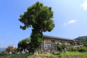 旧余呉小学校